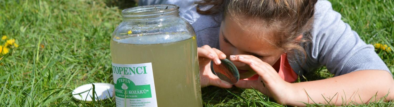 Pozorování vodních mikroorganismů
